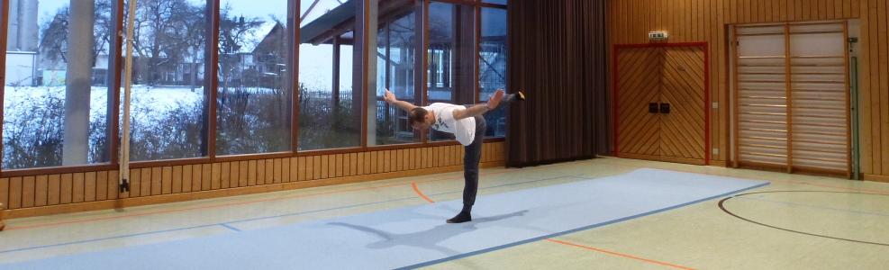 Banner Freizeitgymnastikgruppe Vilsingen
