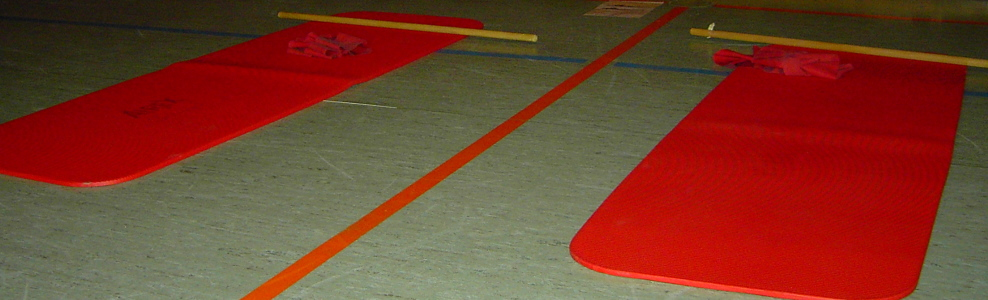 Banner Freizeitgymnastikgruppe Vilsingen - Zirkeltraining